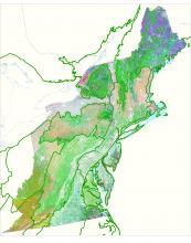upland, wetland, ecological systems, plant community, habitat classification