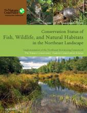The Nature Conservancy, conservation, wildlife, habitats